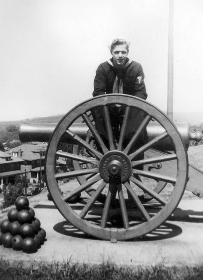 Hampden Park Civil War Field Guns
