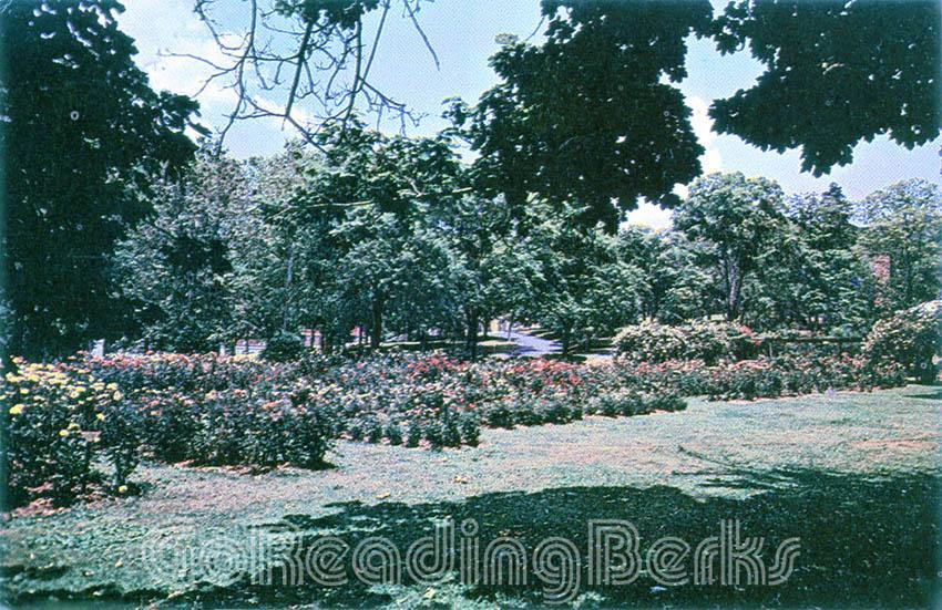 City Park Rose Garden